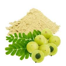 Amla-extract-Brawn-Cosmetics-and-herbals-herbal-extracts