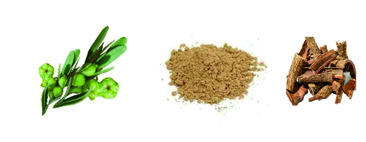Lodhra-Extract-Brawn-Cosmetics-and-herbals-herbal-extracts