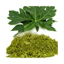 Papaya-Leaf-Extract-Brawn-Cosmetics-and-herbals-herbal-extracts
