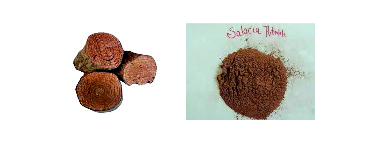 Salacia-Extract-Brawn-Cosmetics-and-herbals-herbal-extracts