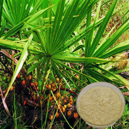 Saw-Palmetto-Berry-Extract-Brawn-Cosmetics-and-herbals-herbal-extracts