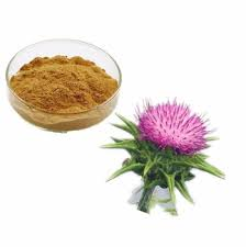 Silymarin-Extract-Brawn-Cosmetics-and-herbals-herbal-extracts