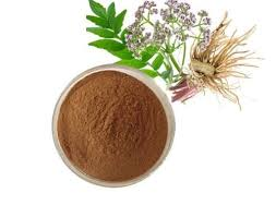 Valerian-Extract-Brawn-Cosmetics-and-herbals-herbal-extracts