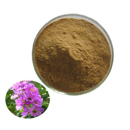 banaba-leaf-extract-Brawn-Cosmetics-and-herbals-herbal-extracts