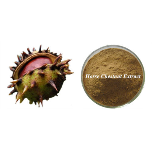 horse-chestnut-extract-Brawn-Cosmetics-and-herbals-herbal-extracts